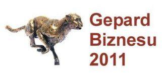 Gepardy Biznesu 2011
